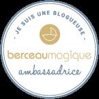 blogueuse ambassadrice